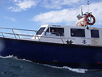 Charter Boat HARPY_15