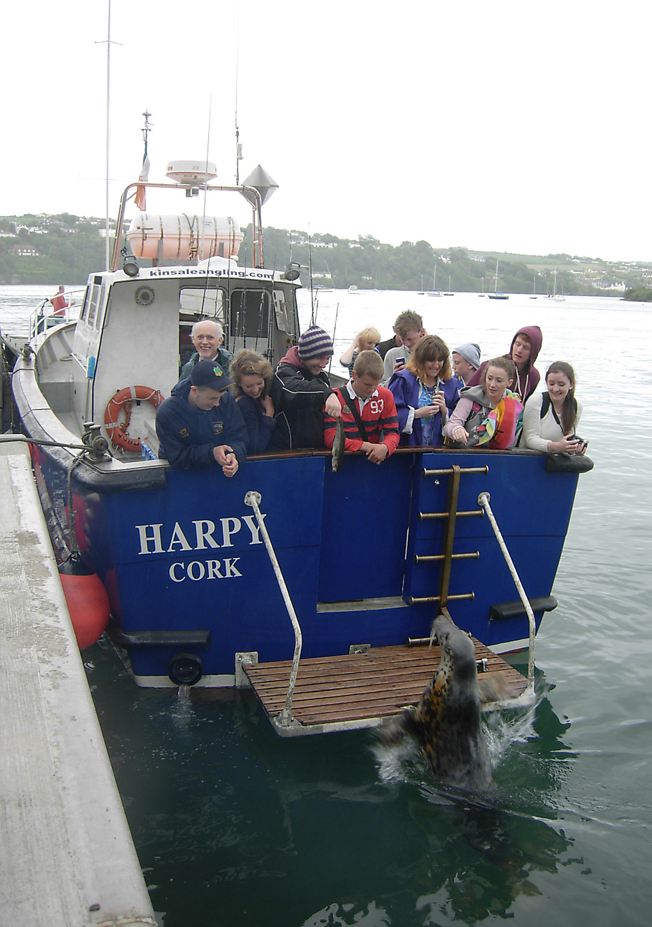 Charter Boat HARPY_16