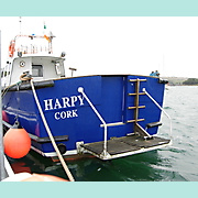 HARPY: Dive ladder up, Stern door closed.