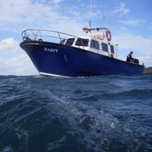 HARPY awaiting divers off Kinsale
