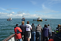 Flotilla at AUD site.