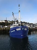 Rachel Jay (II). Munster colours!